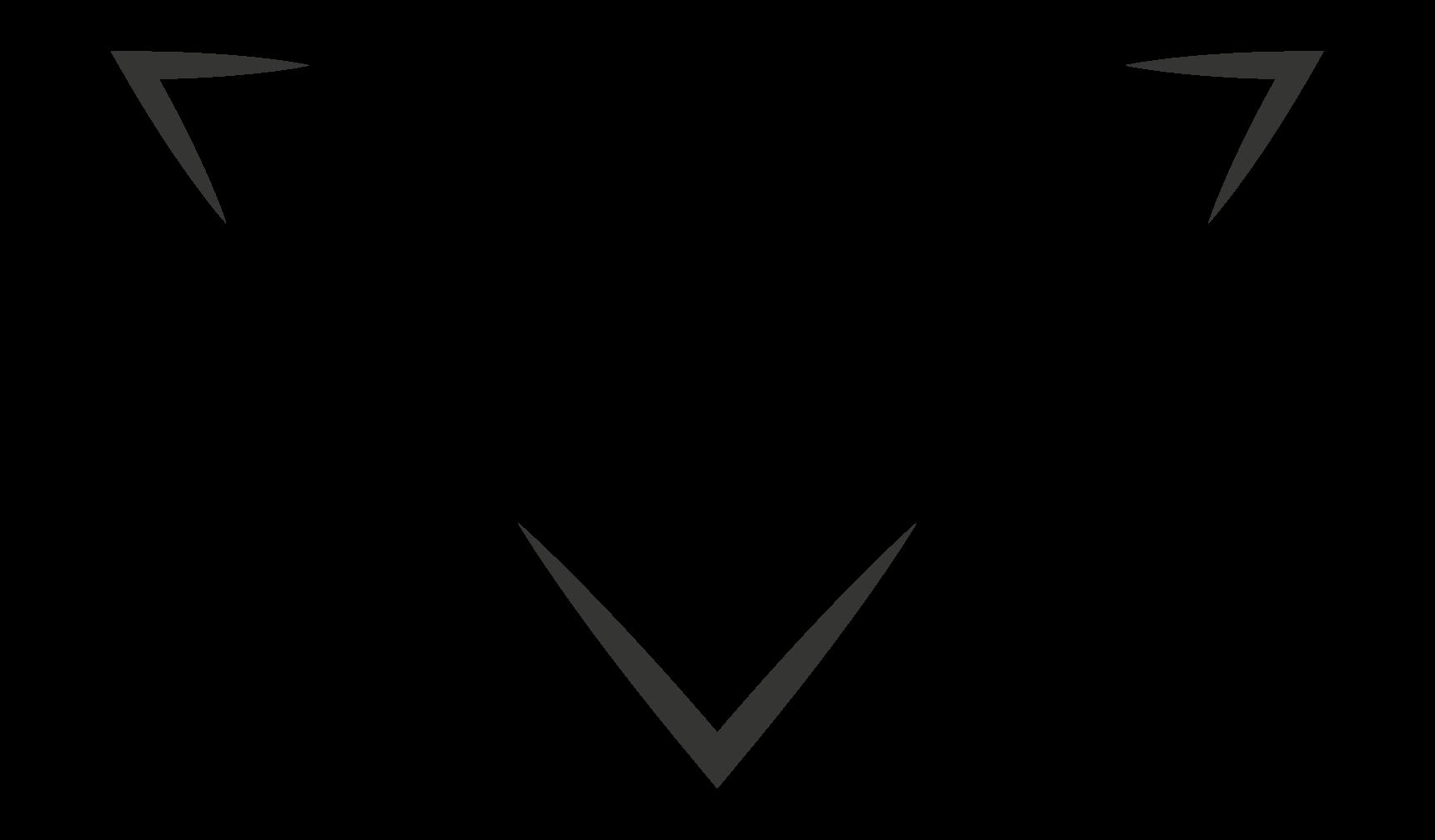 Logo des Functional-Fitness & Boxclubs PAX Gym aus Frankfurt am Main, Partner von FEFLOGX Sportswear.